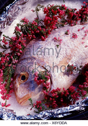 Jacket-baked sea bream with heather stock - Stock Photo