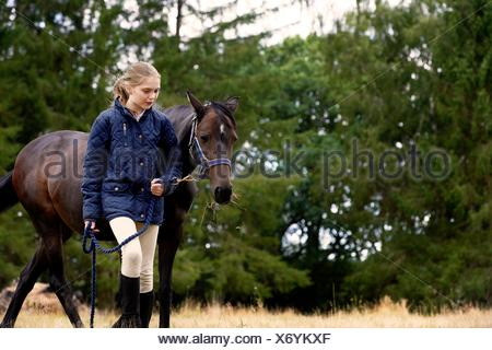 Girl leading horse in field - Stock Photo