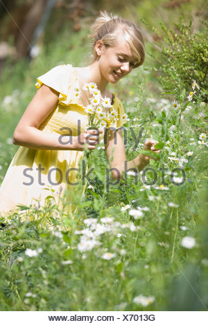Young girl picking flowers - Stock Photo