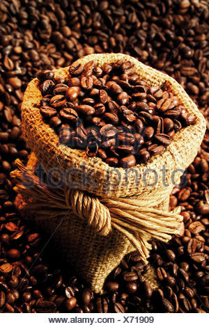 Coffee beans in a sack atop a bed of coffee beans - Stock Photo