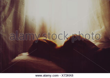 Silhouette Woman Sleeping In Bed - Stock Photo