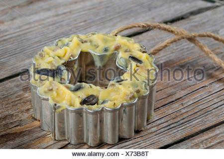 selbstgemachtes Vogelfutter wurde in ein Foermchen zum Aufhaengen gefuellt | self made birdseeds are filled in starshaped jars | - Stock Photo