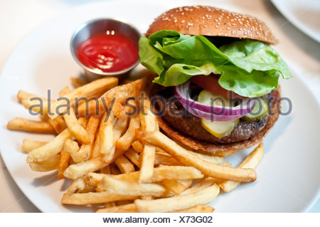 A hamburger and fries on a plate - Stock Photo