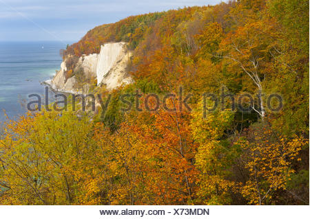 königsstuhl (king's chair), stubbenkammer, jasmund national park, rügen, mecklenburg-vorpommern, germany - Stock Photo