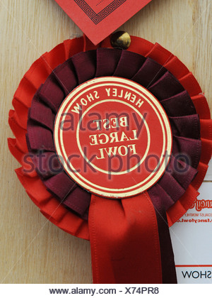 A rosette awarded to the best large fowl, at a country show - Stock Photo