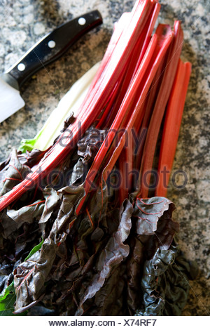 Fresh red swiss chard with a kitchen knife - Stock Photo