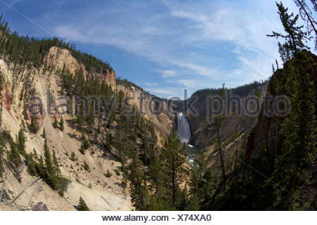 USA, Wyoming, Yellowstone National Park, View of Lower Falls from Red Rock Point, Grand Canyon of the Yellowstone River - Stock Photo