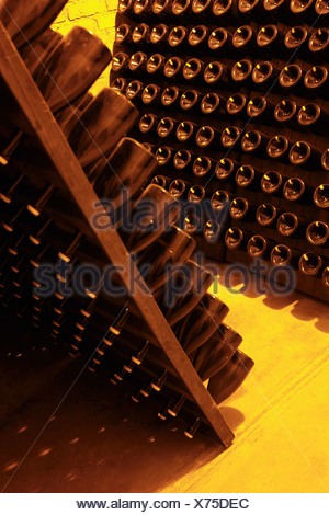 Detail of bottles of champagne in racks at a winery - Stock Photo