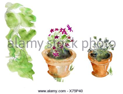 Isolated garden pots, original watercolor sketch, three parts, isolated on white. - Stock Photo