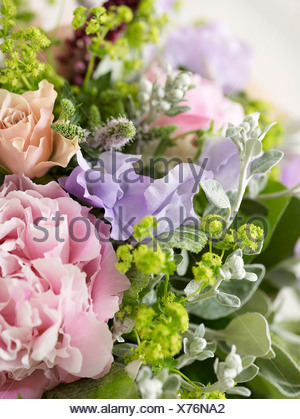 Bunch of flowers including roses, peonies, pea flowers, alchemilla, spearmint, close-up - Stock Photo