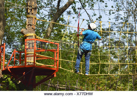 Rope obstacle on tree top - Stock Photo