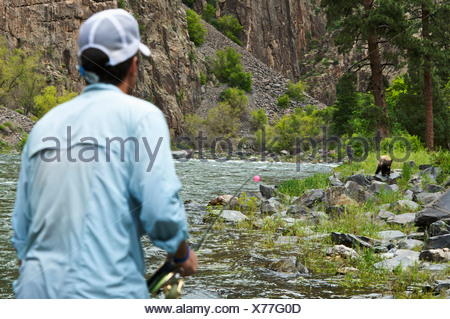 Two fisherman watch a bear carefully in Black Canyon National Park. - Stock Photo