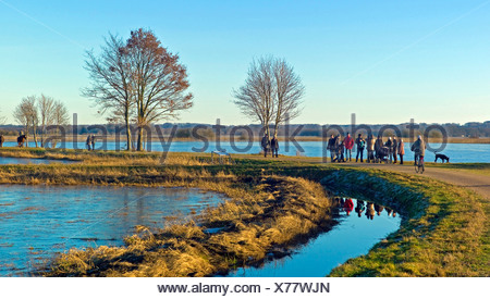 flooded meadows near Hamme river, Germany, Lower Saxony, Osterholz, Worpswede - Stock Photo