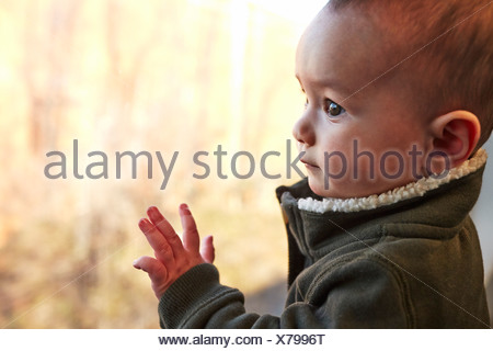 Close up of baby boy looking out of window - Stock Photo
