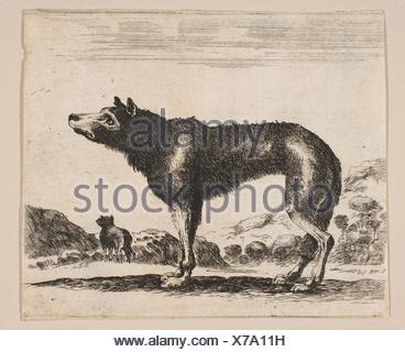 Plate 20: wolf, from 'Various animals' (Diversi animali). Series/Portfolio: 'Various animals' (Diversi animali); Printmaker: Anonymous, 17th century; - Stock Photo