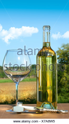 Empty glass with a bottle of white wine against blue sky - Stock Photo