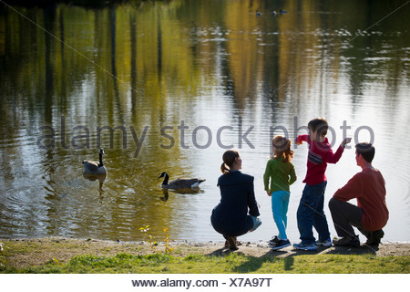Family in park feeding ducks - Stock Photo