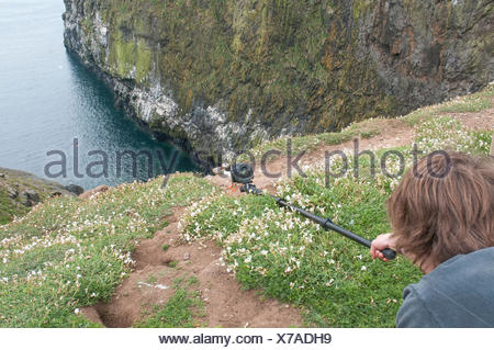 Wildlife photographer, Bertie Gregory, photographing an Atlantic puffin, Fratercula arctica, with a polecam. - Stock Photo