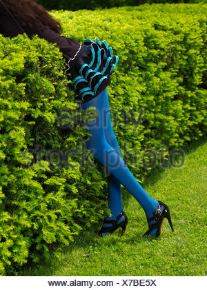 Legs of a woman wearing blue stockings leaning against green bushes, Ontario Province, Canada