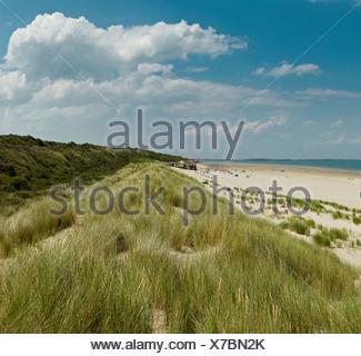 Netherlands, Holland, Europe, Renesse, Northsea beach, landscape, summer, beach, sea, - Stock Photo