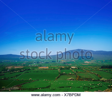 Cooley Peninsula,Co Louth,Ireland;Farmhouses And Fields - Stock Photo