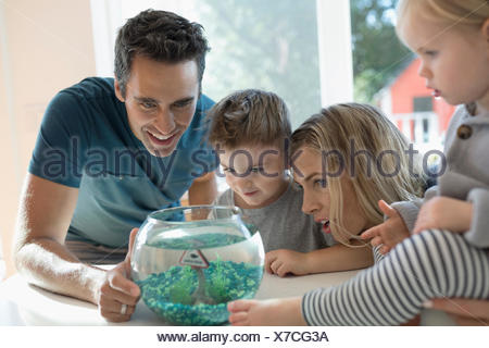Young family watching goldfish in bowl - Stock Photo