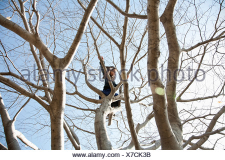A young girl sitting high up in a tree - Stock Photo