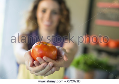 An organic fruit and vegetable farm. A woman holding a tomato. - Stock Photo