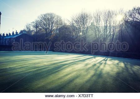 Backlit houses and gardens. Skipton, North Yorkshire, England, UK - Stock Photo