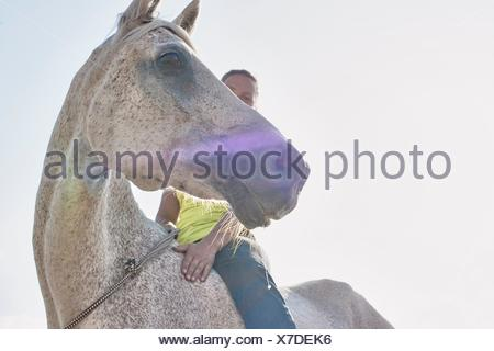 Low angle view of woman riding grey horse bareback - Stock Photo