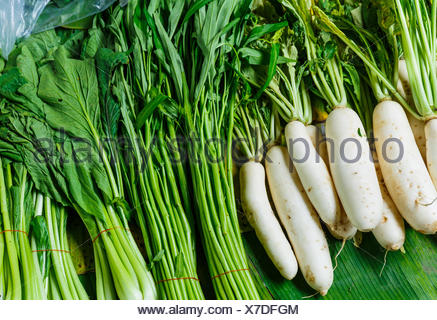 food aliment sell agriculture farming harvest root vegetable chinese stalk stem radish product celery organic chop white - Stock Photo