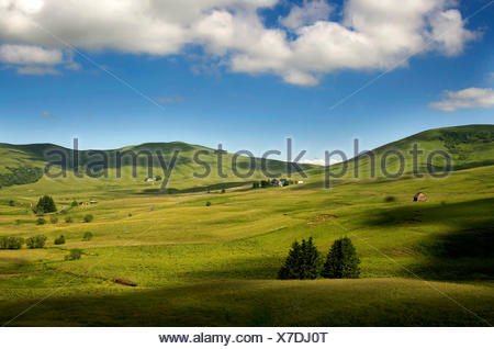 Mountains of Cezallier, Auvergne, France, Europe