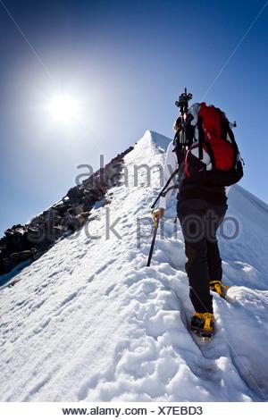 Mountaineer climbing Hochfeiler mountain, Pfitschertal valley, province of Bolzano-Bozen, Italy, Europe - Stock Photo