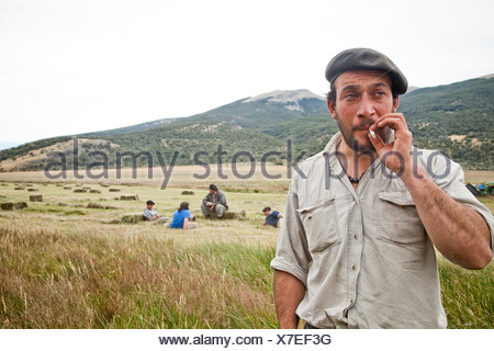 A man in a beret with a beard smokes a cigarette in a hayfield with four men taking a break in the mowed hay behind him. - Stock Photo