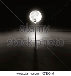 A seagull sitting on top of a lamp post at night silhouetted by the moon - Stock Photo