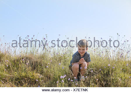 Boy sitting in green field, smiling - Stock Photo