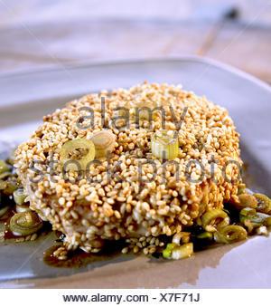 Sesam-Thunfisch - Stock Photo