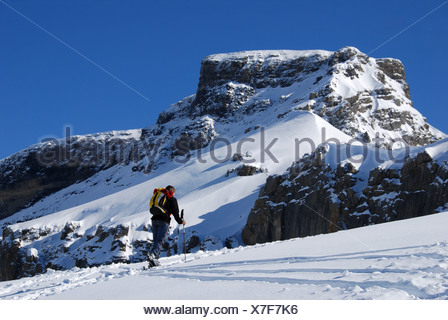 Alps, alpine, alpinisme, mountaineering, mountains, Bernese Oberland, Engstlenalp, ski, ski tour, woman, snow, winter, Switzerla - Stock Photo