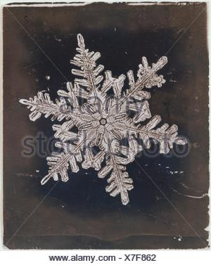 [Snow Crystal]. Artist: Wilson Alwyn Bentley (American, 1865-1931); Date: ca. 1910; Medium: Gelatin silver print; Dimensions: Image: 7.4 x 9 cm (2 - Stock Photo