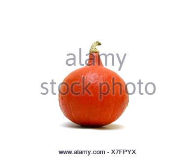 food aliment vegetable pumpkin nutrition fall autumn orange food aliment health - Stock Photo
