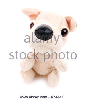 Children toy,Soft teddy dog - Stock Photo