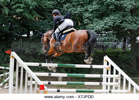 Female show jumper clearing the poles of a Triple Bar Jump during a show jumping competition at Gross-Winkelhausen, Duesseldorf - Stock Photo