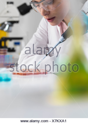 Scientist pipetting stem cells in tubes - Stock Photo