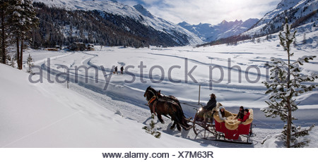 Switzerland Europe mountain mountains winter canton GR Graubünden Grisons Engadin Engadine Upper Engadine horse sledge sleigh - Stock Photo