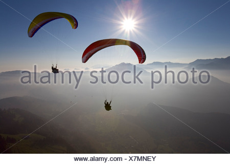 flying paraglider sports Paragliding Bezau Bregenzer wood Vorarlberg Austria Europe flies freedom liberty - Stock Photo