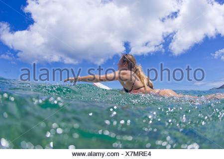 girl paddling surfboard - Stock Photo