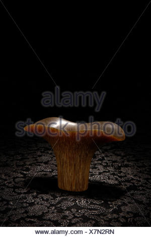 Carved rhinoceros horn cup - Stock Photo