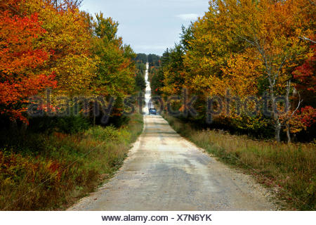 A pick up truck drives down a dirt road in the Dolly Sods Wilderness. - Stock Photo