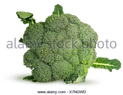 Large inflorescences of fresh broccoli with leaves top view isolated on white background. - Stock Photo