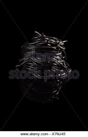 Squid ink pasta. - Stock Photo